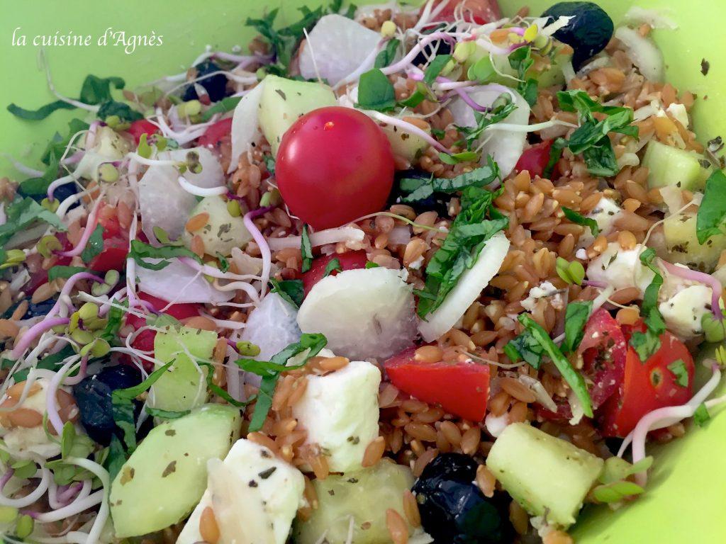 salade de petite épeautre à la grecque 2