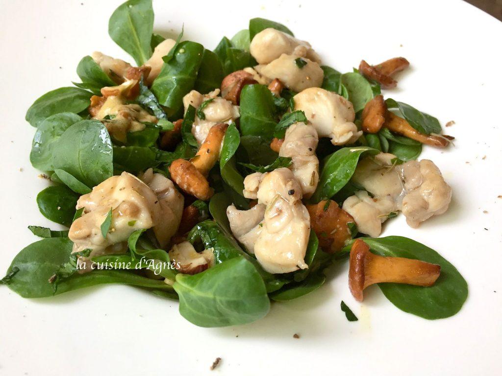 salade-de-lapin-aux-girolles-et-noisettes-3